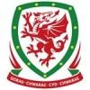 Wales EM 2016